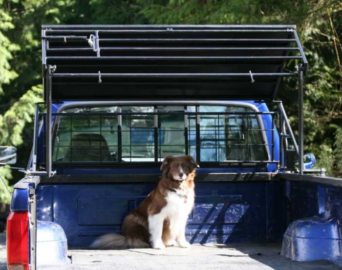 Buy The Patent Big Pawz Pickup Truck Bed Pet Shelter Or